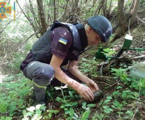 На Прикарпатті поблизу лісу знайшли артилерійський снаряд (ФОТО)