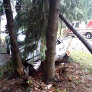 На Прикарпатті авто врізалось в дерево — подружжя з онукою в лікарні