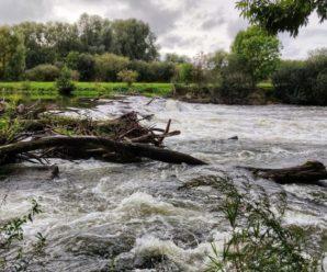 Річки вийшли з берегів: на Закарпатті сталася повінь. Відео