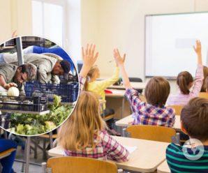 Українські вчителі їдуть на заробітки до Польщі: за три місяці заробляють 5 тис. доларів