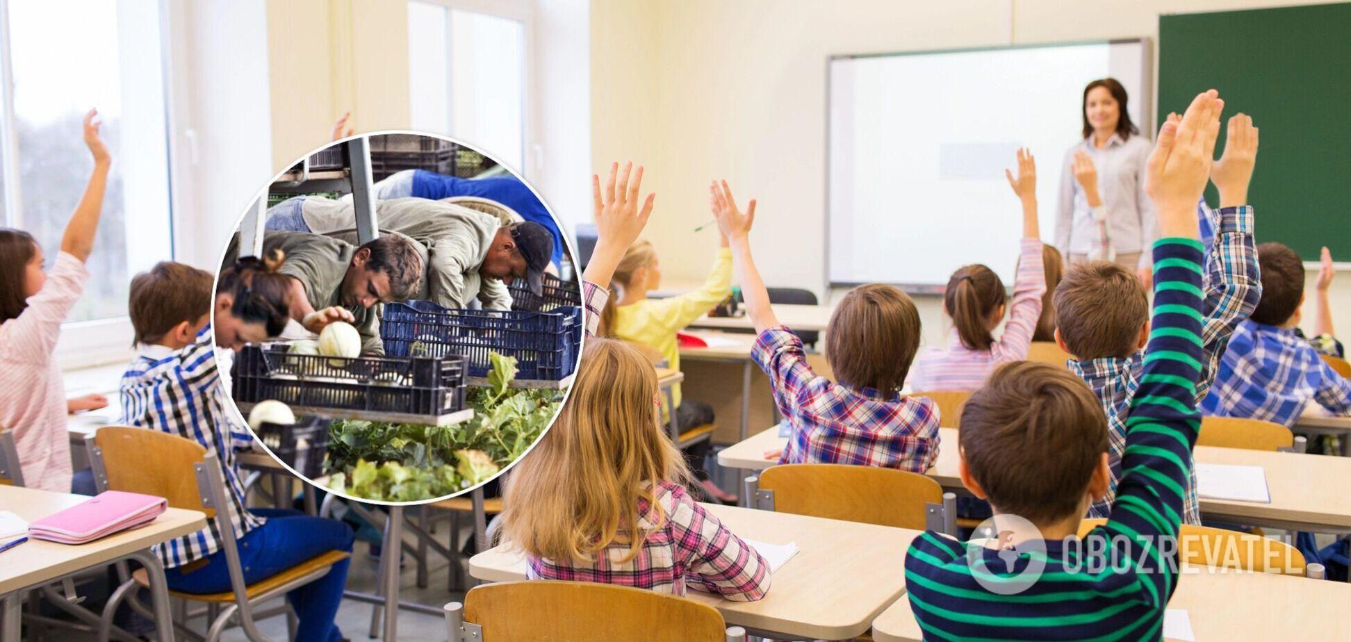 Скільки заробляють вчителі на заробітках