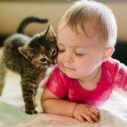 Жорстокість до тварин – загроза для людей: в UAnimals нагадали про взаємозв'язок і розповіли, що робити батькам дітей