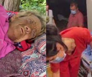 З травмою ніг вмирала на вулиці: жінка майже місяць лежала під деревом і просила допомоги (відео).