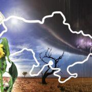 """""""Кліматичні біженці — вже реальність"""": в Україні синоптики попереджають про глобальні зміни погоди і стихійні лиха"""