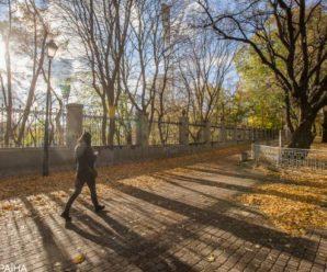 Бабине літо прийде без особливого тепла: синоптики оновили прогноз