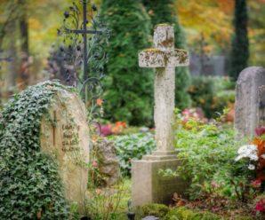 """Під Львовом чоловік облаштував приватний цвинтар: """"я ховаю тут п'яту частину львів'ян"""""""