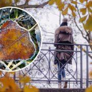 Перші нулі і заморозки: якою буде погода в Україні восени (детальний прогноз)