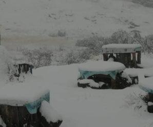 Болгарію та Грецію засипає снігом (ВІДЕО)