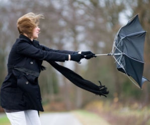 Сильний вітер: на Франківщині оголосили штормове попередження