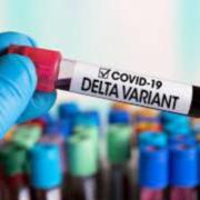 """На Прикарпатті майже всі хворі на COVID-19 інфіковані штамом """"Дельта"""" — Руслан Савчук"""